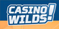 casinowilds-logo